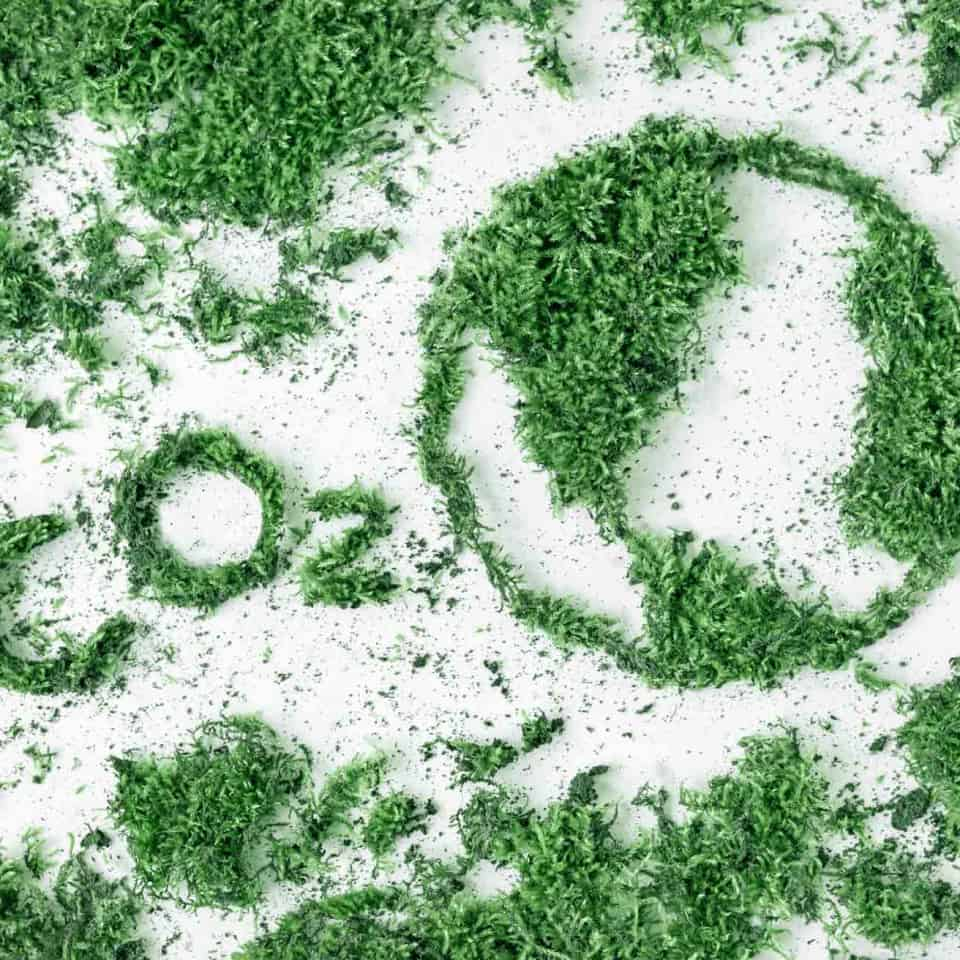 The Environmental Impact of Virtual Events - Virtual Events Platform, Software, Solutions